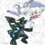 Legendary Pokémon Reshiram & Zekrom being added to Ultra Sun/Moon