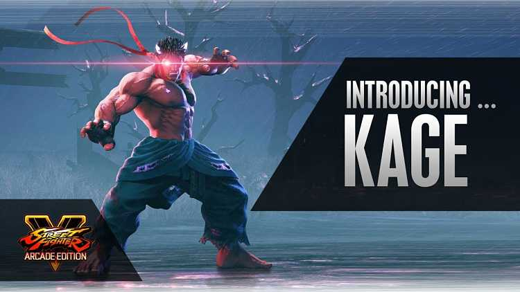Street Fighter V Arcade Edition Kage Announced