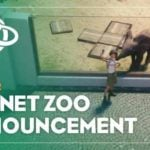 Planet Zoo kicks off launch with new trailer