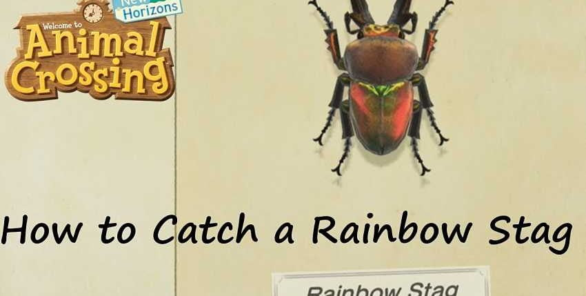 How to catch the rainbow stag in Animal Crossing: New Horizons