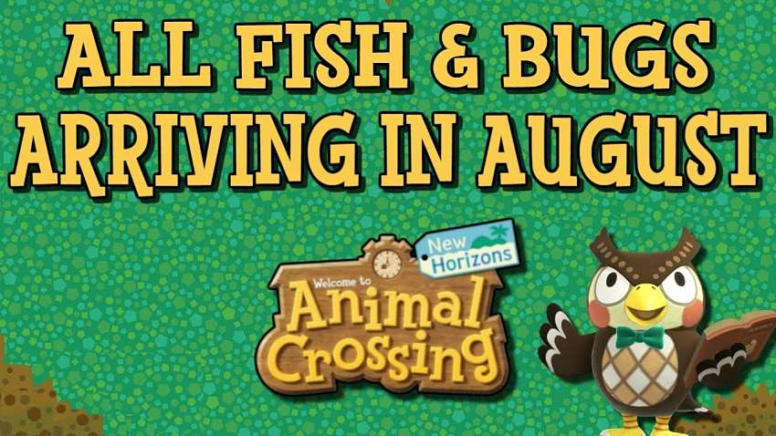 ACNH fish, bugs, and sea creatures for August 2020